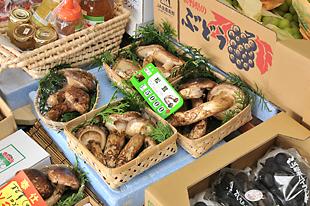 秋には松茸も店頭に並びます。